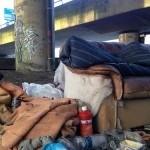 Daklozenopvang in nood! Amsterdam huisvest liever ongedocumenteerden en uitgeprocedeerden