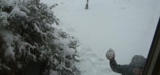 2234743101_7134978124_sneeuwbal
