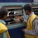 Heeft de Gates Foundation honderdduizenden meisjes gesteriliseerd in India?