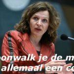 De rekening van oud-minister Schippers (VVD): Wet voor uitwisselen medische gegevens via LSP blijkt onuitvoerbaar