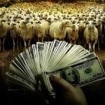 Haha gratis geld... Partners van zelfstandigen betalen door coronasteun honderden euro's extra belasting