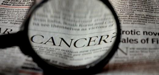 ea3db8062af51c3e81584d04ee44408be273e7d11cb915419df7_640_kanker