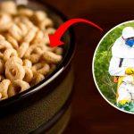 EU-gerechtshof schrapt geheimhouding Roundup: Studies over glyfosaat moeten openbaar