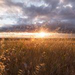 Nieuwe bevindingen tonen verband dat in Europa neerslag gekoppeld is aan zonne-activiteit