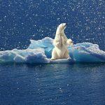 VVD, CDA en D66 stemmers de grote klimaatvervuilers, ook rijke of hogeropgeleide heeft niets met duurzaamheid