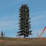 Ter vervanging van bomen: ijzeren palen met 'Biosolar Leaf' bladeren