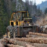 Onderzoek: biomassa zorgt voor 20% meer uitstoot dan kolen, verschil met gas nog groter