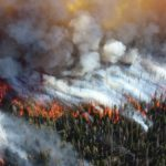 Vergeten feit: 1974/75 Australische bosbranden waren meer dan 9 keer groter dan die van 2019/20!