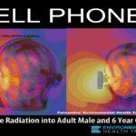 Nieuwe studie: straling mobiele telefoons veroorzaakt DNA schade in hersenen proefdieren