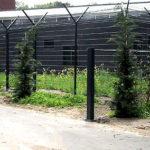 Ouders drievoudige moordenaar Thijs H. smeekten GGZ om hulp, maar opname was 'onnodig'