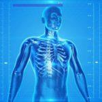 Het menselijk lichaam is de afgelopen eeuw steeds kouder geworden