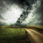 Storm des doods Ciara mogelijk heftiger dan verwacht: 'parkeer je auto niet onder een boom'