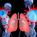 Vormen ACE2 receptoren en het coronavirus samen een biowapen?