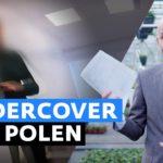 Undercover in polen: Polen en Roemenen misbruiken Nederland als uitkeringsgrabbelton