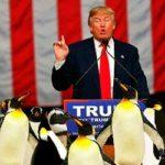 Soros schepte nog in januari op: 'Ontwrichting economie betekent einde Trump'