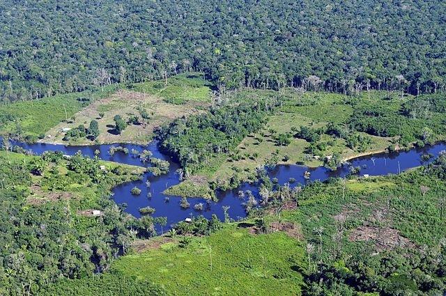 eu-handelsakkoord-is-rampzalig-voor-amazonewoud