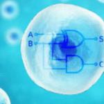 Ze maken van je cellen een microprocessor